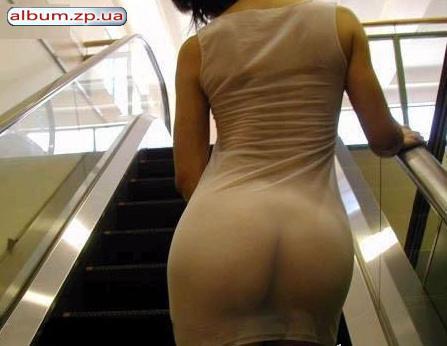 голые женские попки в юбке